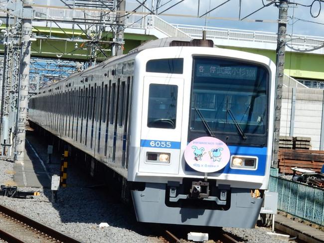 Rscn3658