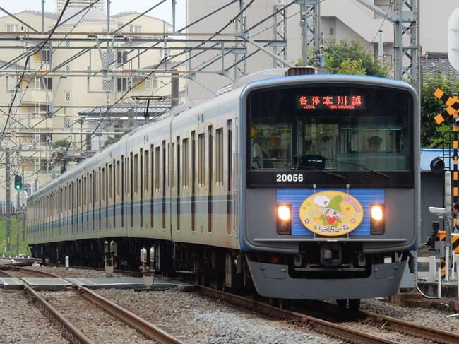 Rscn6088
